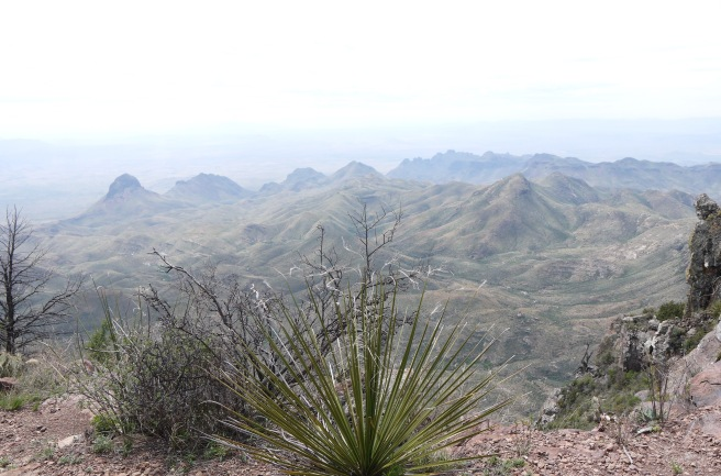 South Rim view, Big Bend National Park
